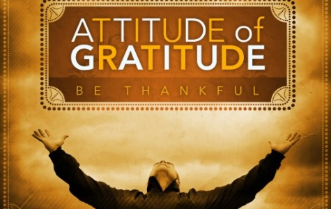 "#DolphinsLiveWell:  ""Have an Attitude of Gratitude"""