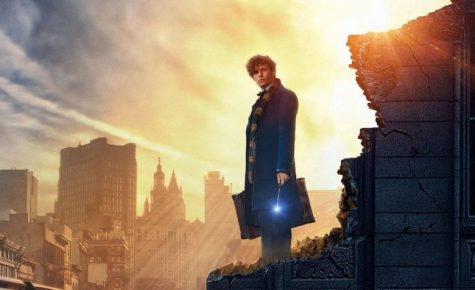 Fantastic Beasts and why to see them