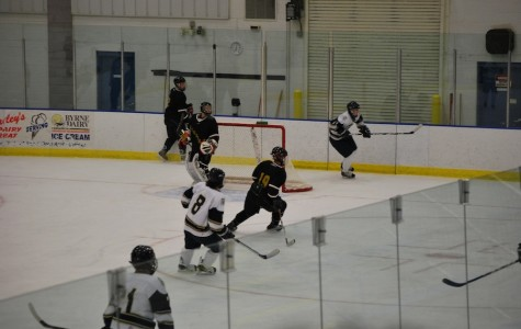 'Phins hockey wins both home games over the weekend