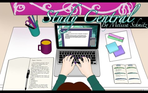Study Central: Mistakes to learn from and improve on next year