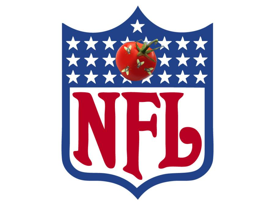 Ranking America's Favorite Sports League's By Popularity