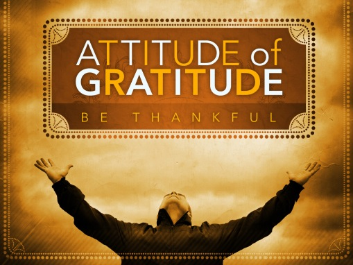 """#DolphinsLiveWell:  """"Have an Attitude of Gratitude"""""""