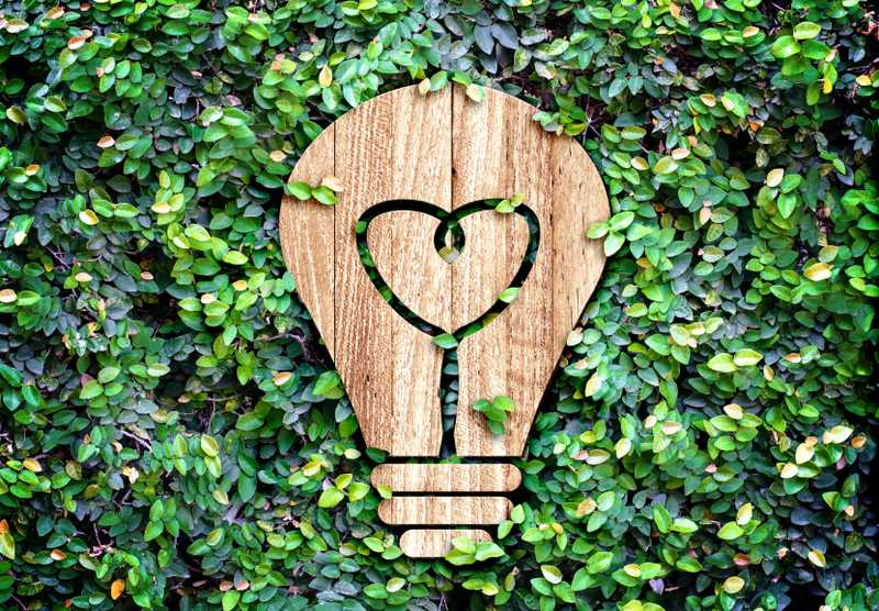 Light+Bulb+wood+icon+and+heart+shape+inside+on+green+leaf+wall%2CEco+concept.