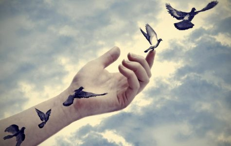 An Open Letter about Letting Go